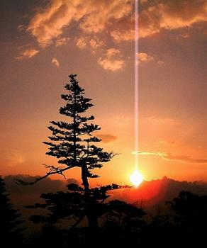 希望の光.jpg